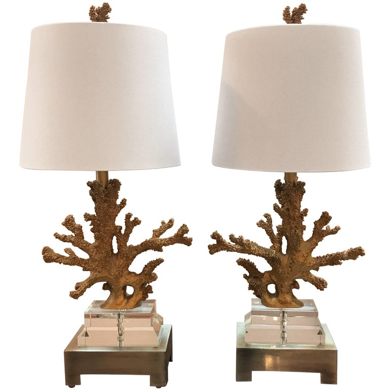Pair of Gilt Faux Coral and Lucite Lamps For Sale