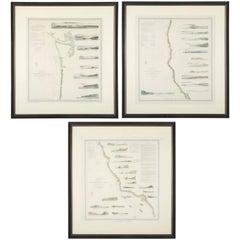 Set of Three Mid 19th Century Charts of the California Coast