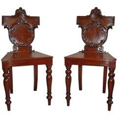 Regency Pair of Irish Mahogany Hall Chairs