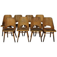 Set of Eight Shell Chairs from Czech Republic, circa 1960