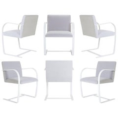 Brno Flat-Bar Chairs in Dove Velvet, Lunar Gloss Frame, Set of Six