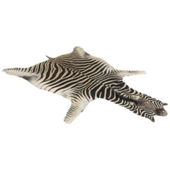 Authentic Zebra Hide Rug