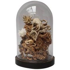 Victorian Sea Still Life Diorama under Glass with Okimono Bone Octopus