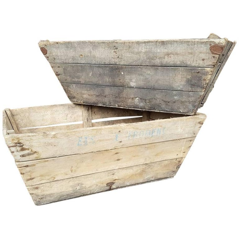 Vintage French Grapes Crates from the Drôme Region