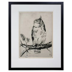 Framed Etching of an Owl by Henry Emerson Tuttle