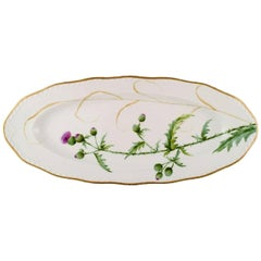 Antique Royal Copenhagen Fish Platter, Hand-Painted in High Quality