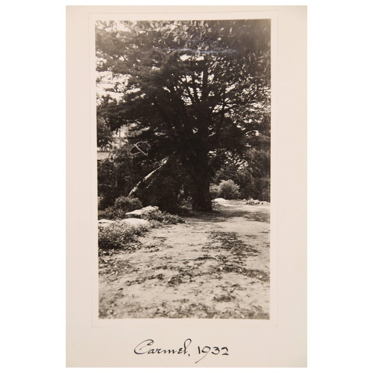 Collection of 16 Black and White Photos of Carmel California