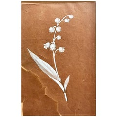 R. Lalique paper Gouache White Gouache Study Flower french 1915 Listed