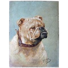 Early 20th Century Oil on Panel Study of an English Bulldog, Alph Jack, 1926