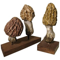 Collection of Three Papier Maché Models of Morels by Heinrich Arnoldi, 1880