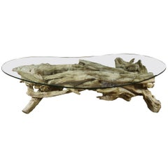Monumental Root Table Base with Glass Top