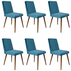 Set of Six 20th Century Petrol Blue Velvet Chairs, 1960s