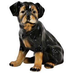 Vintage Lifesize Ceramic Dog, Rottweiler Pup, 1980s, Spanish
