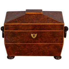 Regency Burr Yew Wood Tea Caddy