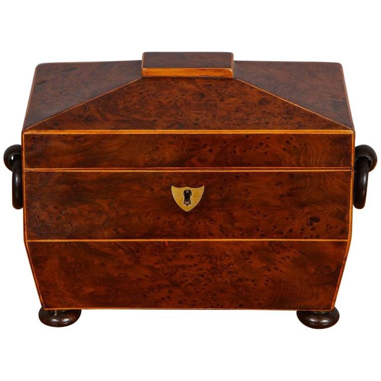 Regency Burr Yew Wood Tea Caddy