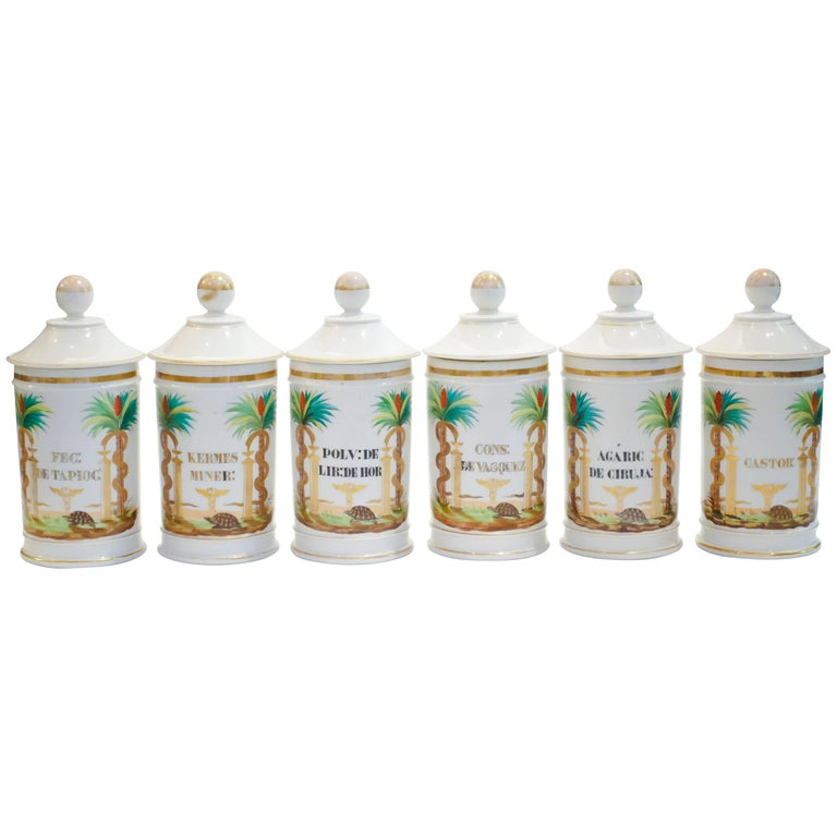 19th Century Palm Tree Pharmacy Jars For Sale