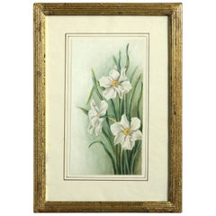 Late 19th Century Watercolor Study of Narcissi