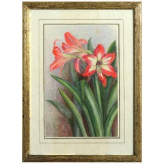 Late 19th Century Botanical Watercolor Depicting Red Lilies