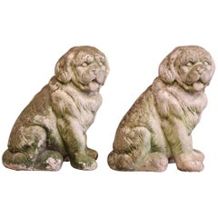 Pair of French Vintage Patinated Cast Stone Saint Bernard Dogs Sculptures
