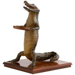 Crocodile Waiter 1