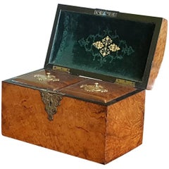 Regency Burr Yew Tea Caddy