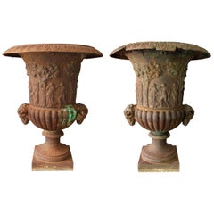 19th Century Pair of French Cast iron Planters