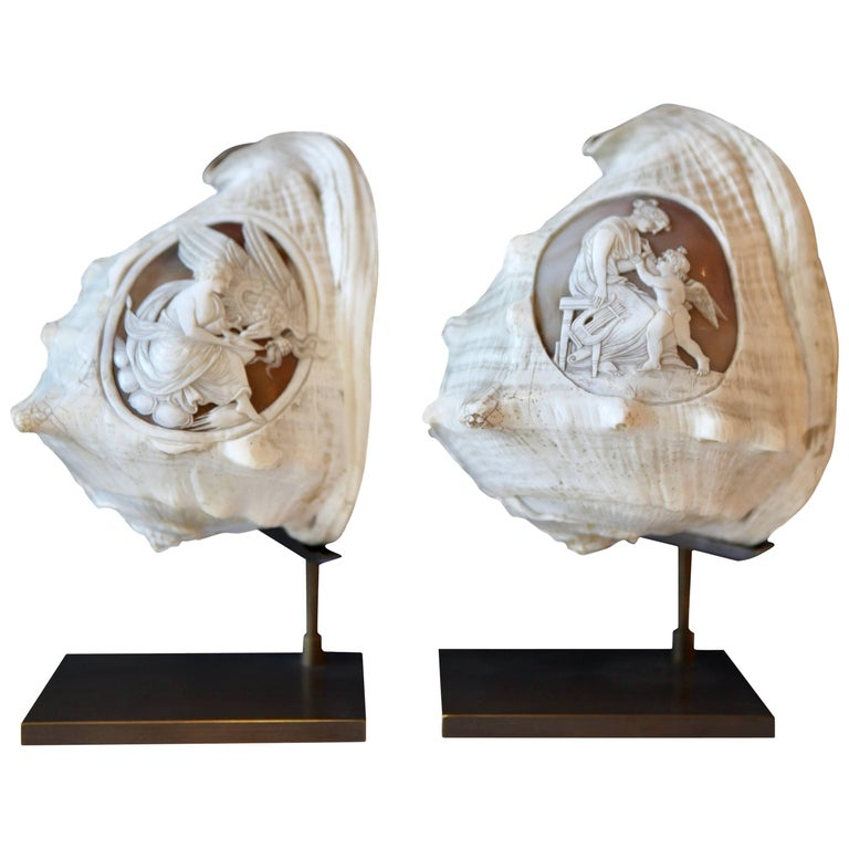 Pair of Antique Grand Tour Cameo Carved Sea Shells, Italy, 1870 For Sale