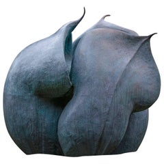 Helleborus Niger Seed Pod 'Artist Cast Now Featuring in Royal Enclosure, Ascot'