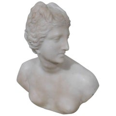 19th Century Art Nouveau Carved Marble Bust Sculpture