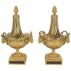 Fine Pair of 19th Century Gilt and Patinated Bronze Neoclassical Urns