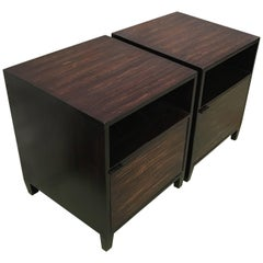 20th Century Pair of Ebonized Macassar Nightstands or Side Tables with One Door