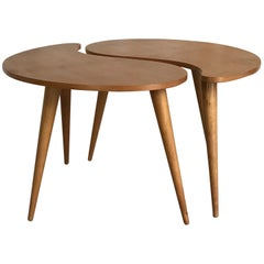 Rare Awesome Dutch Kidney-Shaped Coffee Table Set from 'Gelderland NV', 1950s
