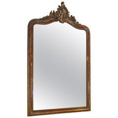 20th Century Gold Patinated Mirror