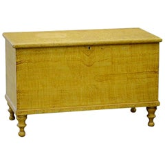 American Grain Painted Blanket Chest in Ochre Yellow, Pennsylvania, circa 1830