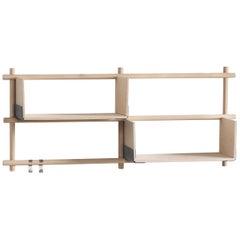 Foldin Shelf Four Holes Two Shelves with Two Hooks