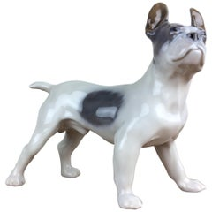 1920s Royal Copenhagen Porcelain Bulldog Figurine, Boston Terrier