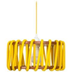 Modern Macaron Hanging Lamp D30