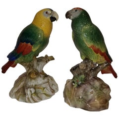 Pair of Meissen Porcelain Models of Parrots