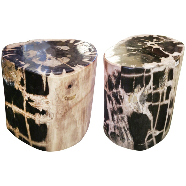 Petrified Wood Set of 2 n°A Side Table For Sale
