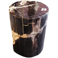 Petrified Wood n°D Side Table