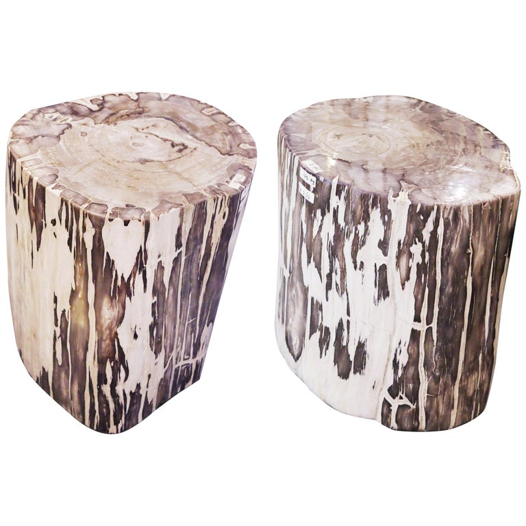Petrified Wood Set of 2 n°B Side Table For Sale