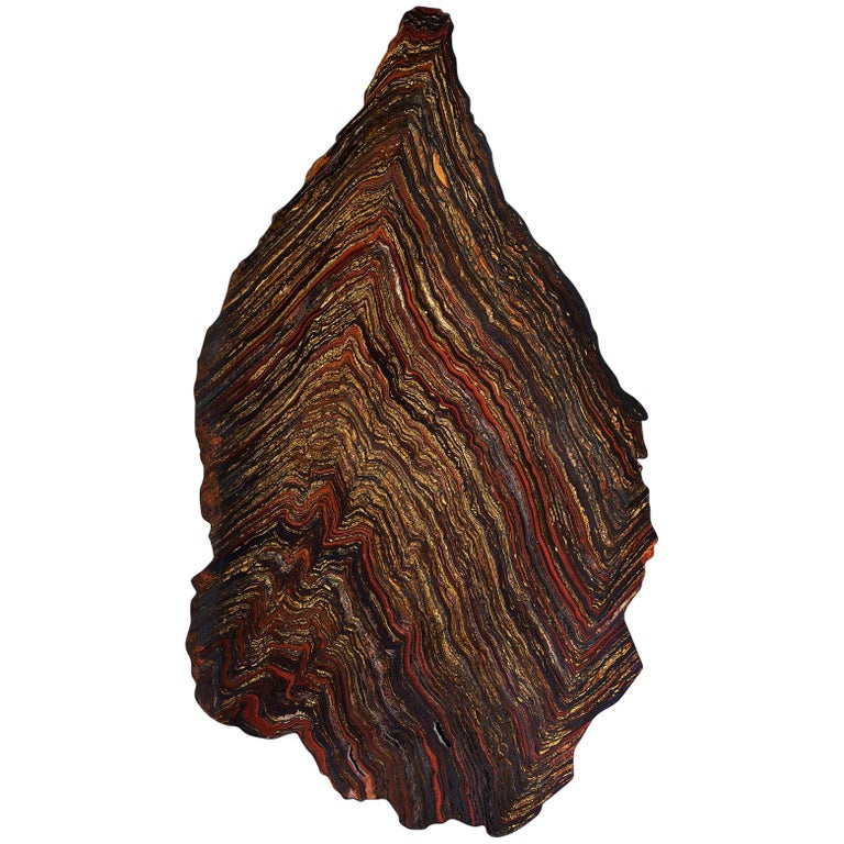 Vibrant Red Jasper, Tiger's Eye, Haematite Trace Fossil Wall Piece  For Sale