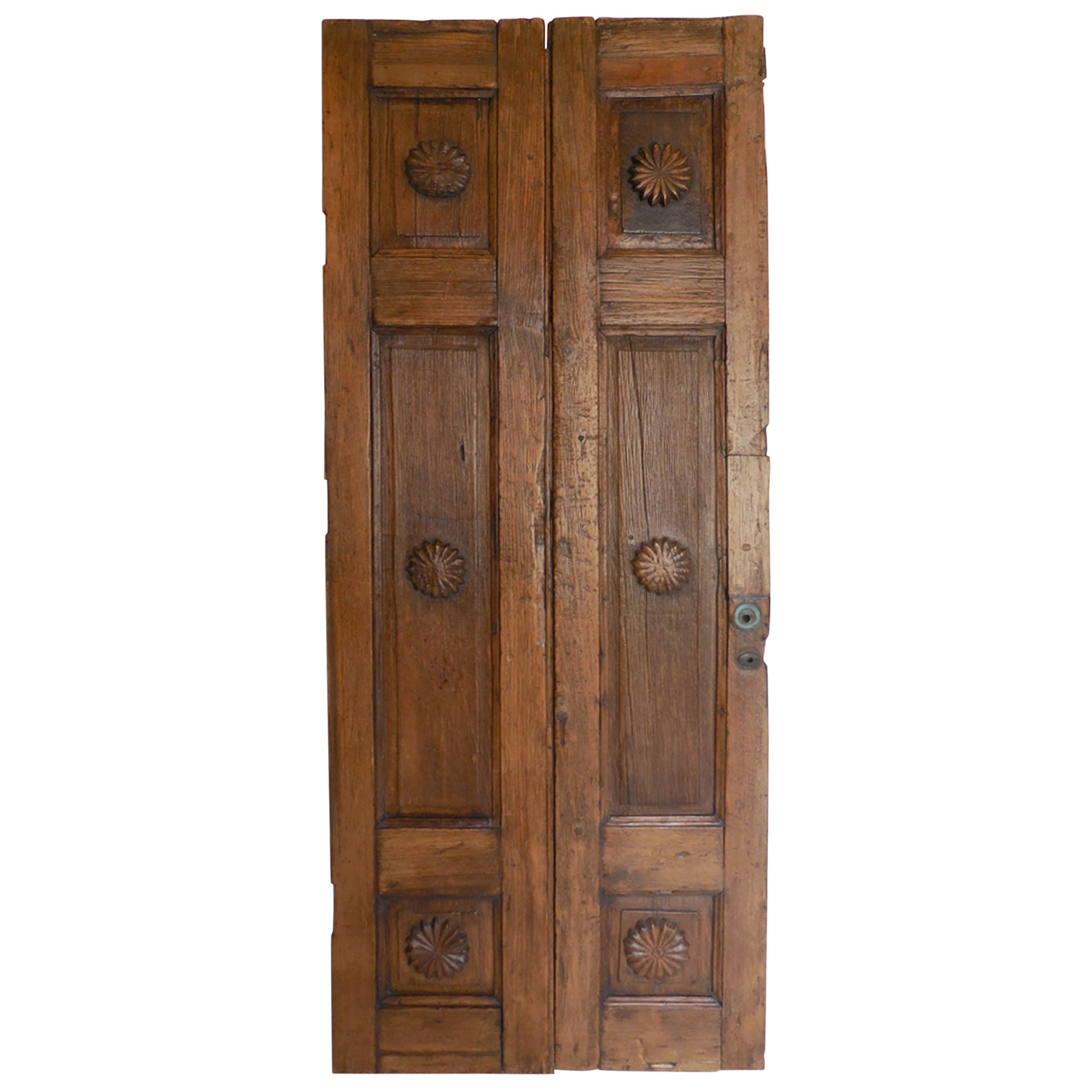 Spanish Colonial Pair of Doors or Screen