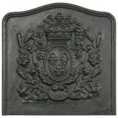 Large 19th Century French Cast Iron Fireplace Back with Crown and Fleurs-de-Lys