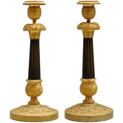 Pair of Charles X Candlesticks in Ormolu and Patinated Bronze