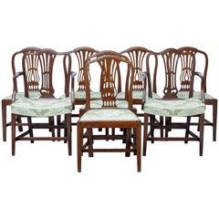 Set of Eight 19th Century Hepplewhite Design Mahogany Dining Chairs
