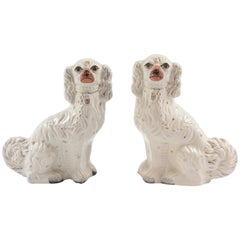 Pair of Staffordshire Dogs, 19th Century with Charming Expressions
