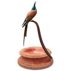Southern Carmine Bee-Eater Fine Taxidermy by DS&vT