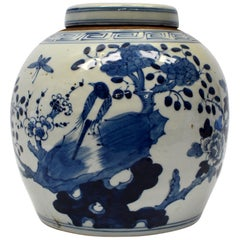Blue and White Chinese Porcelain Jar, Magpie and Butterfly