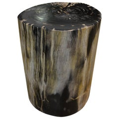Andrianna Shamaris Striped Petrified Wood Side Table